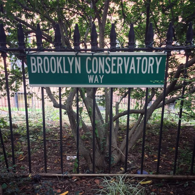 Happy September! Come down brooklynconservatory way to register for fallhellip